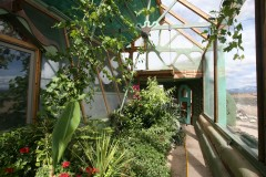 Greenhouse of Phoenix earthship with plants for greywater recycling. Photo: Kirsten Jacobsen