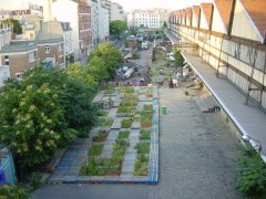 Ecobox garden. Photo: aaa